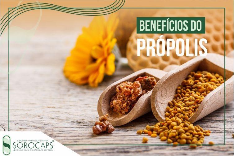 Sorocaps Indústria Farmacêutica própolis-blog Sorocaps desenvolve fórmula exclusiva de própolis